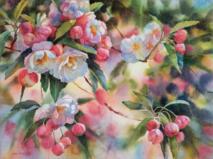 2nd place: 'Apple Blossoms' by Svetlana Orinko